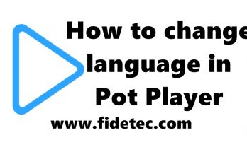 pot player language